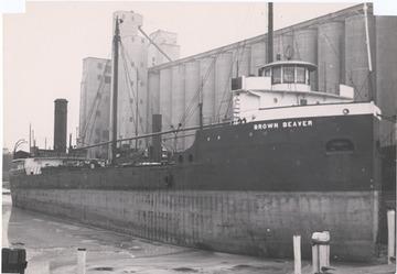 Fr. Edward J. Dowling, S.J. Marine Historical Collection: Brown Beaver