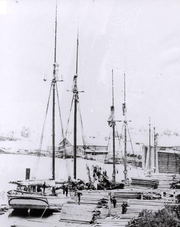 Fr. Edward J. Dowling, S.J. Marine Historical Collection: O. R. Johnson