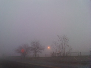 Maurice Greenia, Jr. Collections: Fog by the Freeway Detroit, December 2015