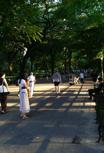Crisscrossed Shadows, Central Park. New York City, 2011