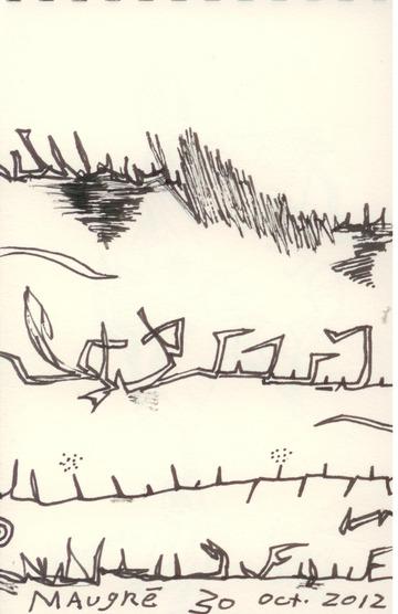 Fences, Grasses and Shrubs